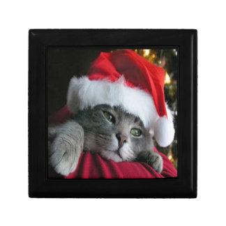 caja de regalo del gatito del navidad