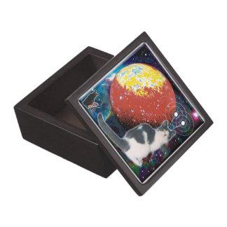 Caja de regalo del hobo del Robo-Gato Cajas De Regalo De Calidad