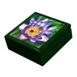 Caja de regalo del lirio del color de agua