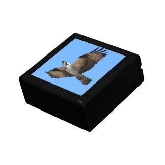 Caja de regalo del pájaro de Osprey