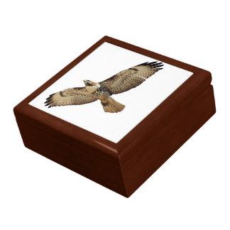 Caja de regalo del pájaro del rapaz del halcón