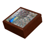 Caja de regalo del pavo real