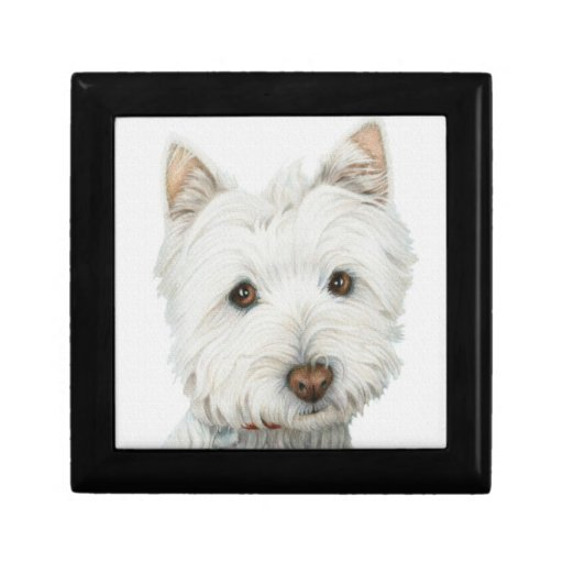 Caja de regalo del perro de Westie