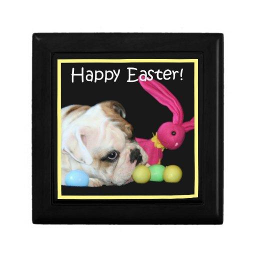 Caja de regalo del perro del dogo de Pascua Joyero Cuadrado Pequeño