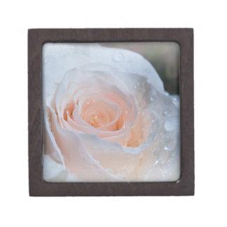 Caja de regalo del rosa blanco caja de joyas de calidad
