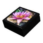 Caja de regalo en colores pastel del lirio