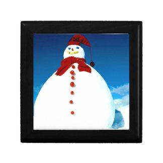 Caja de regalo escarchada del navidad del invierno