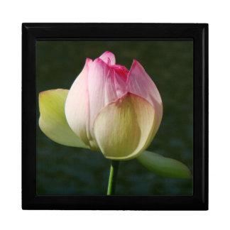Caja de regalo floral de la charca de la flor de joyero cuadrado grande