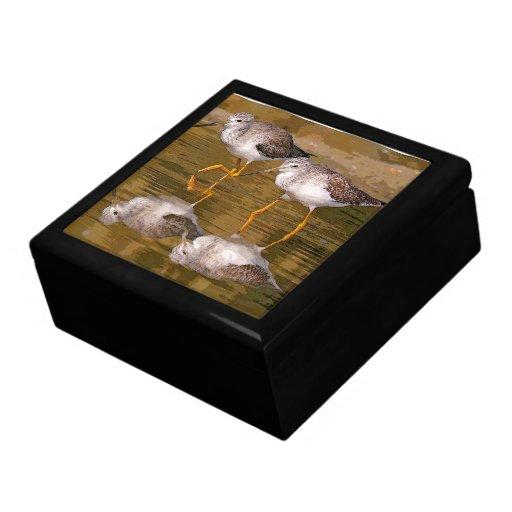 Caja de regalo hermosa de las aves costeras