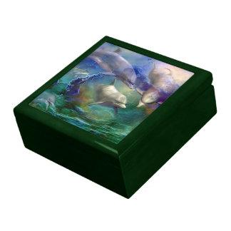 Caja de regalo ideal del arte del delfín