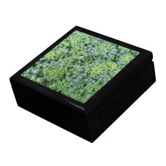 Caja de regalo macra del bróculi joyero cuadrado grande