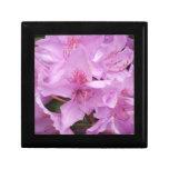 Caja de regalo rosada de Rhodo