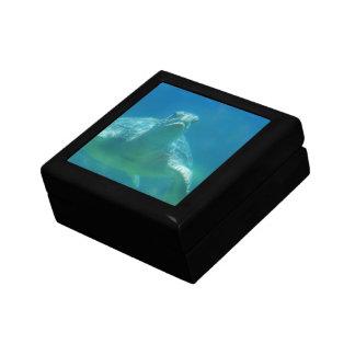 Caja de regalo subacuática de la tortuga