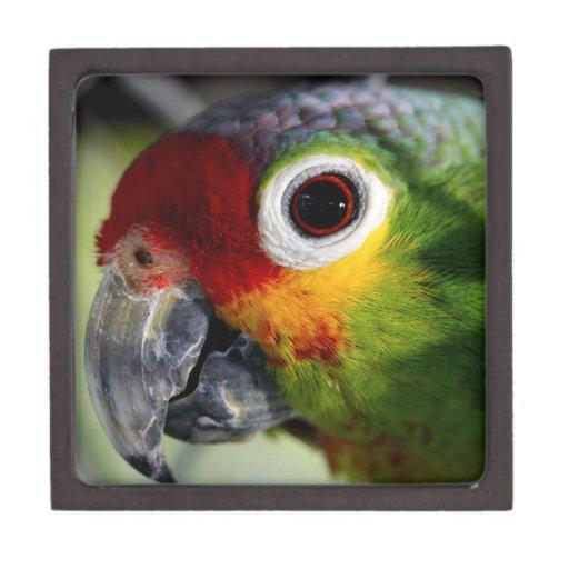 Caja de regalo superior de la foto colorida del lo caja de recuerdo de calidad