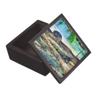 Caja de regalo superior de la iguana de Bahama Cajas De Recuerdo De Calidad