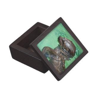 Caja de regalo superior de la nutria del bebé caja de recuerdo de calidad
