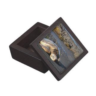 Caja de regalo superior de la tortuga de mar caja de recuerdo de calidad