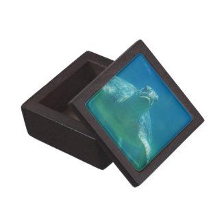 Caja de regalo superior de la tortuga subacuática cajas de joyas de calidad