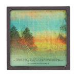 Caja de regalo superior de los árboles coloridos d caja de regalo de calidad