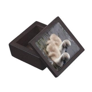 Caja de regalo superior de los cisnes del bebé cajas de recuerdo de calidad