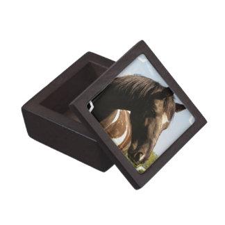 Caja de regalo superior del caballo de proyecto de caja de recuerdo de calidad
