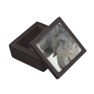 Caja de regalo superior del elefante el tocar la t caja de recuerdo de calidad
