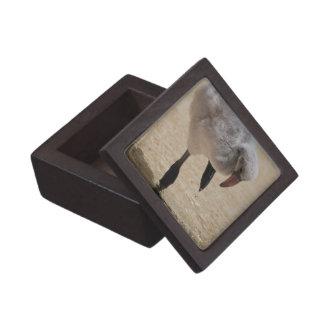 Caja de regalo superior del flamenco del bebé caja de joyas de calidad