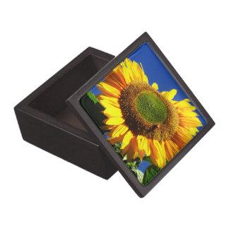 Caja de regalo superior del girasol verde del terc cajas de joyas de calidad