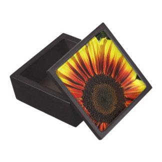 Caja de regalo superior del primer vivo del giraso cajas de joyas de calidad