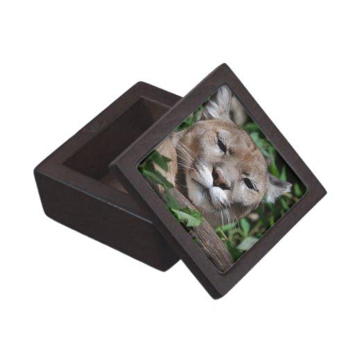 Caja de regalo superior despredadora del puma cajas de regalo de calidad
