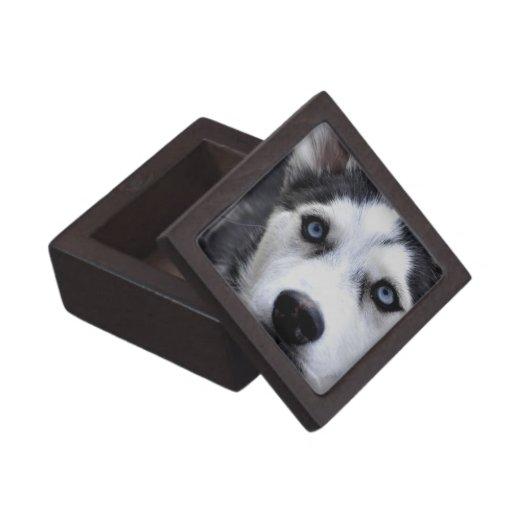 Caja de regalo superior fornida observada azul cajas de regalo de calidad