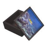 Caja de regalo superior hawaiana de la tortuga de  caja de regalo de calidad