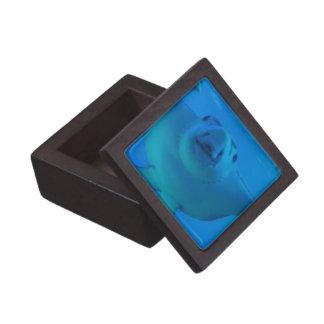 Caja de regalo superior subacuática de la pastinac cajas de regalo de calidad