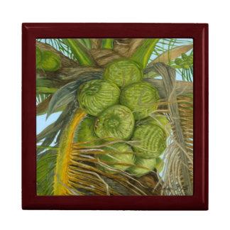 Caja de regalo verde del coco