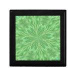 Caja de regalo verde del pavo real