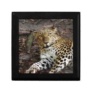 Caja de Template-8.5x8.5-Gift Joyero Cuadrado Pequeño