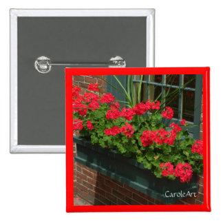 Caja de ventana verde roja de los geranios pin