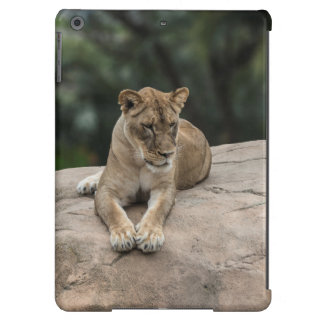 Caja del aire de Ipad del león Funda Para iPad Air