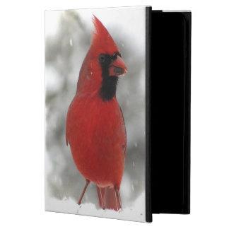 Caja del aire del iPad de los cardenales
