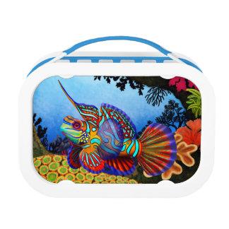 Caja del almuerzo colorida de los pescados del gob