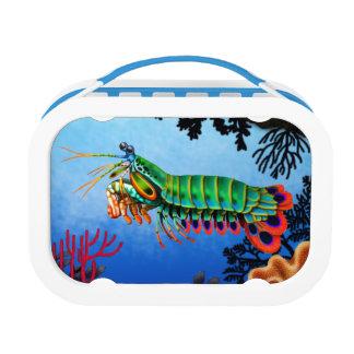 Caja del almuerzo del camarón de predicador del pa