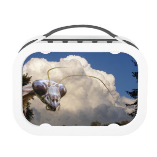 Caja del almuerzo del ~ del predicador y de la nub