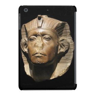 Caja del busto de Pharoah Fundas De iPad Mini