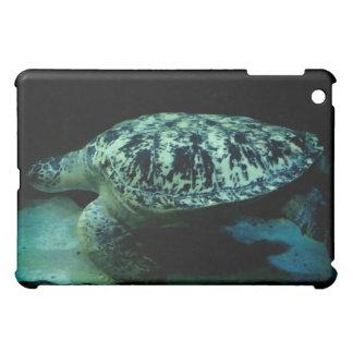 Caja del cojín de la tortuga de mar I