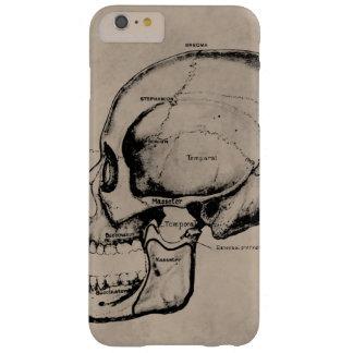 Caja del cráneo para el iphone 6 funda de iPhone 6 plus barely there