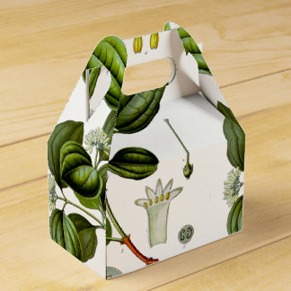Caja del ejemplo del vintage del árbol de nuez del cajas para regalos