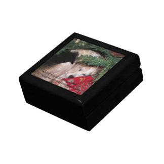 Caja del monumento del mascota cajas de joyas