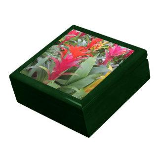 Caja del recuerdo - bosque de Bromeliad Joyero Cuadrado Grande