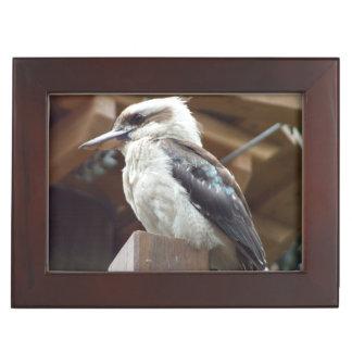 Caja del recuerdo de Kookaburra Caja De Recuerdos