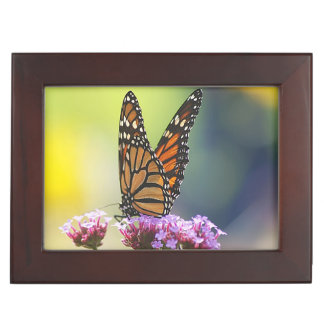 Caja del recuerdo mariposa de monarca